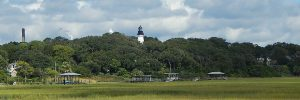 lighthouse through trees
